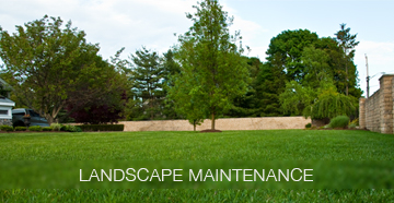 Landscape Maintenace